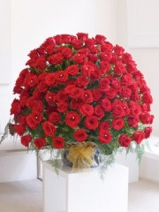 WOW! 200 Red Rose Arrangement