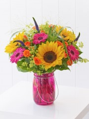 Bold Brights Perfect Gift