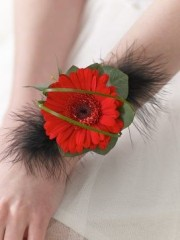 Red Germini and Feather Wrist Corsage
